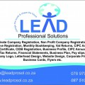 Lead Professional Solution 2[616]